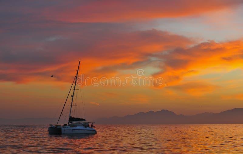 Catamaran de navigation à l'océan à la côte de l'Afrique du Sud au lever de soleil photo libre de droits