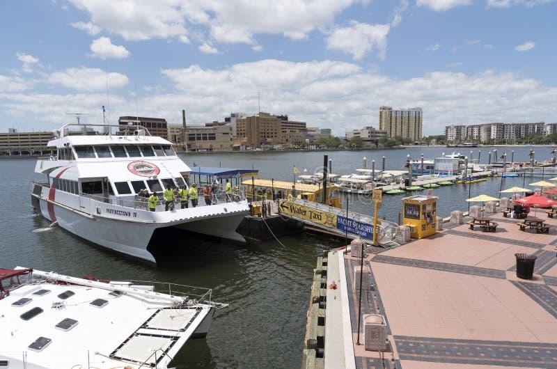 Catamaran ferry docking in Tampa Florida USA royalty free stock image
