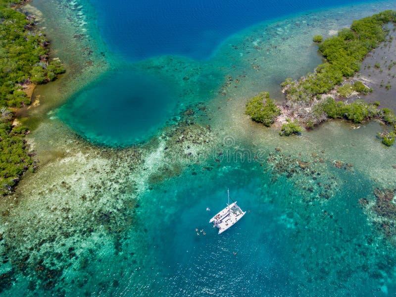 Catamaran in koraalrif op kust van Belize stock afbeelding