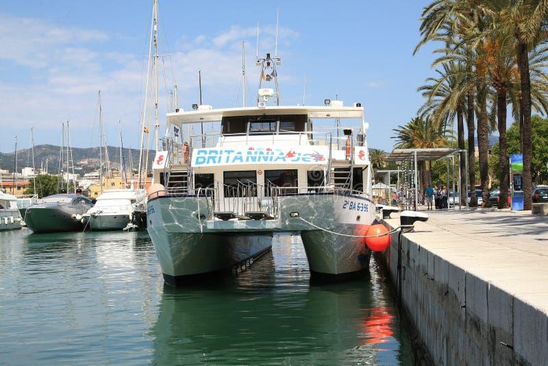 Catamaran stock images