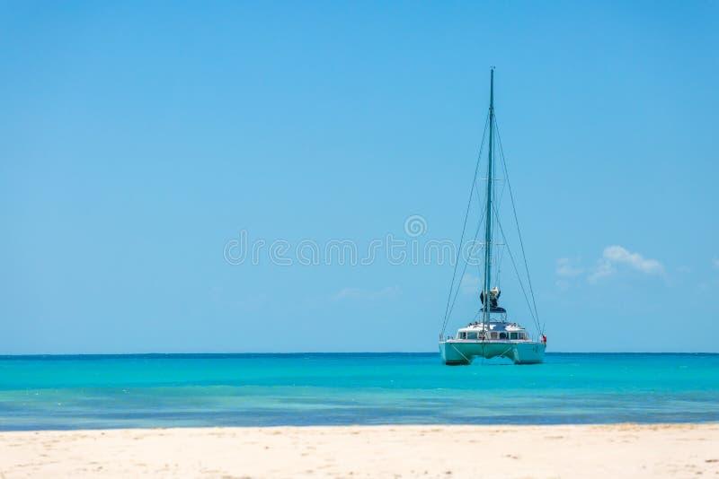 Catamaran przy plażą obrazy royalty free