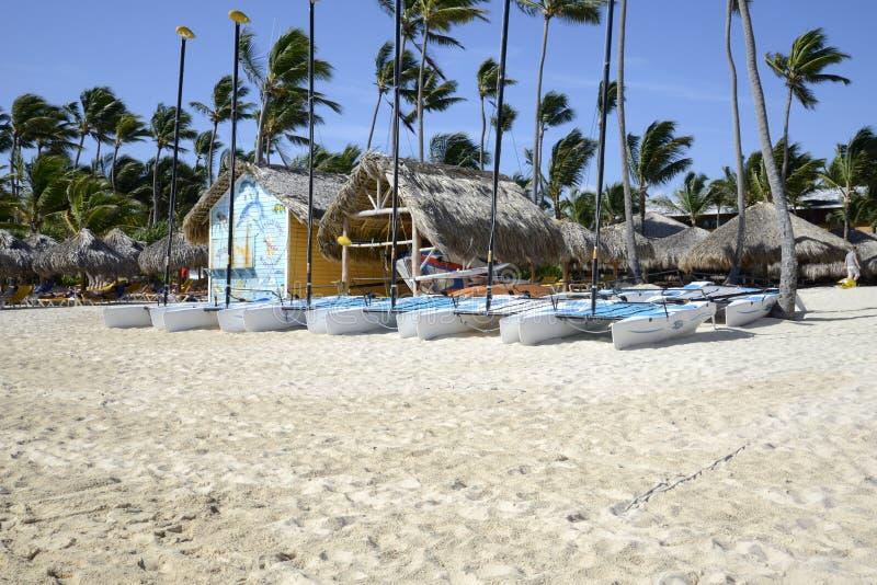 Catamaran sailboats royalty free stock image