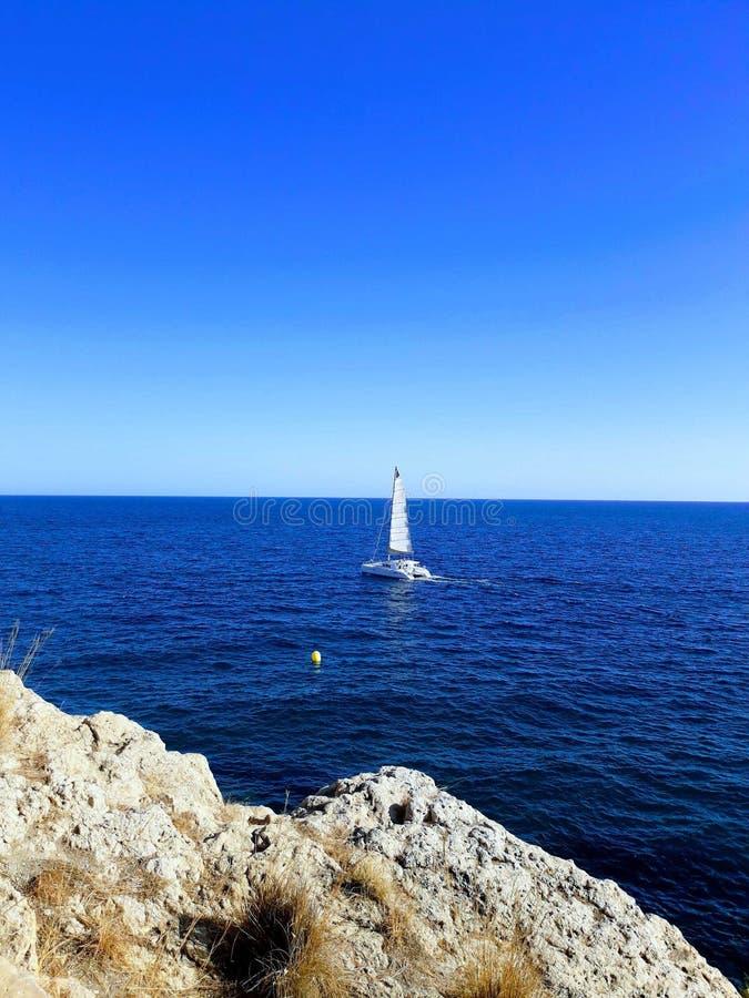Catamaran sailing royalty free stock image