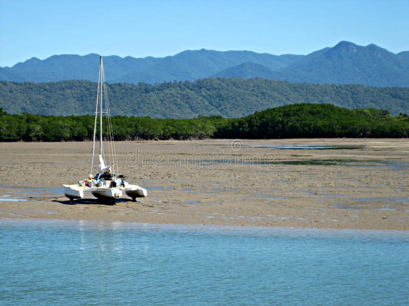 Catamaran sur les appartements de boue de marée photographie stock libre de droits