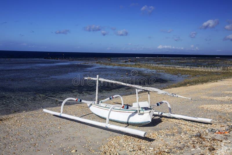 Download Catamarani Delle Industrie Della Pesca Sulla Spiaggia, Nusa Penida, Indonesia Immagine Stock - Immagine di bello, festa: 55360175