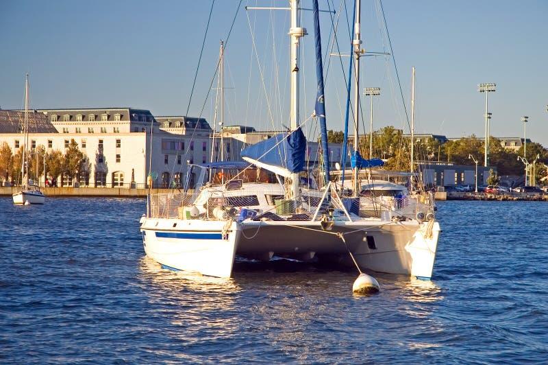 Catamarano a Annapolis fotografia stock