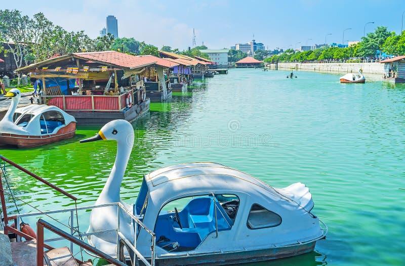 Catamarano del cigno nel mercato di galleggiamento di Pettah, Colombo fotografia stock