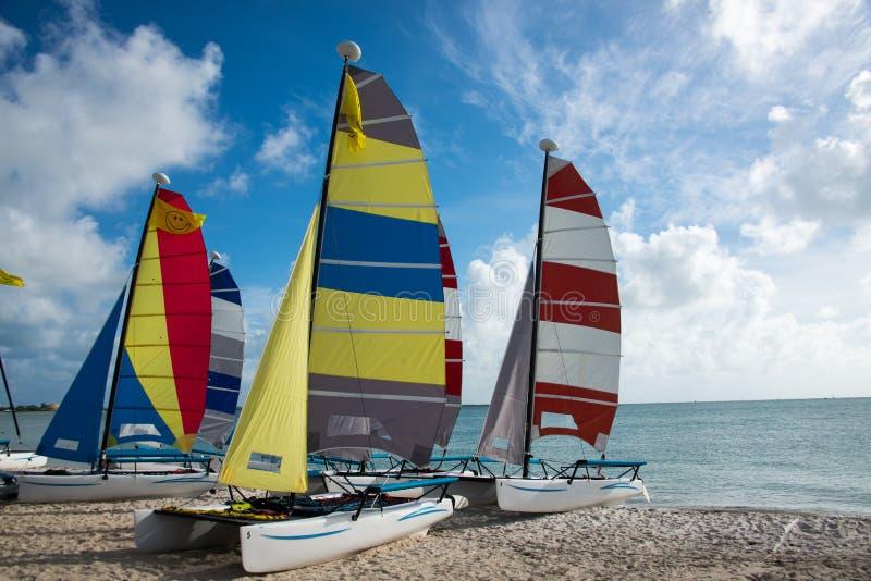 Catamarans stock image