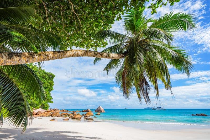Catamarans przy anse Lazio na Seychelles 69 obrazy stock