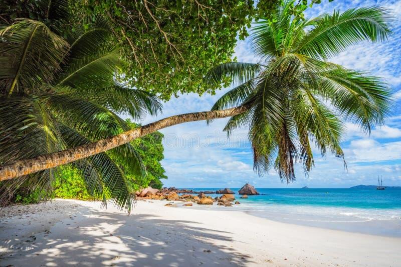 Catamarans przy anse Lazio na Seychelles 72 obrazy stock