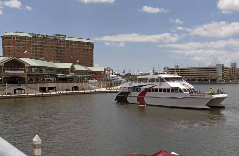 Catamaranveerboot het vertrekken Tamper Florida de V.S. royalty-vrije stock foto