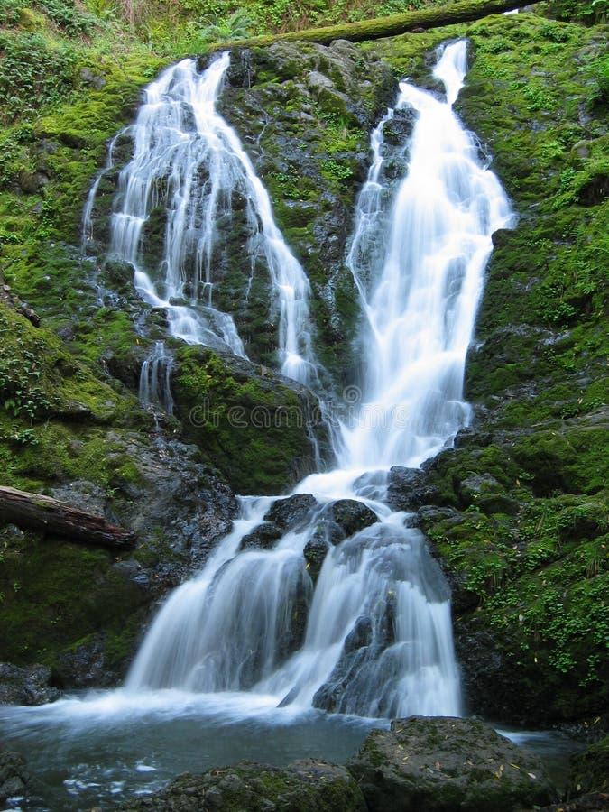 Download Cataract Falls stock photo. Image of daytime, moss, cascade - 492988