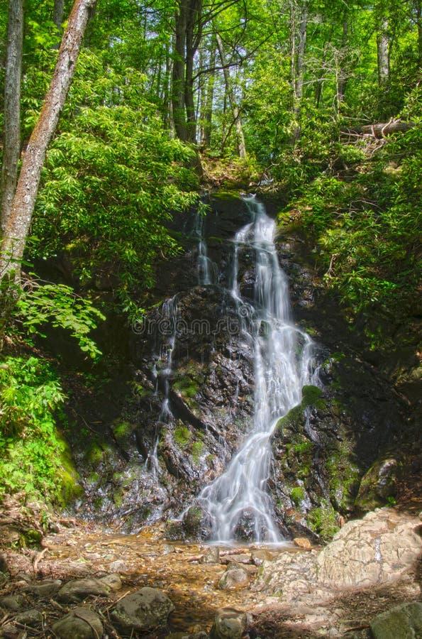 Cataract Falls Waterfall
