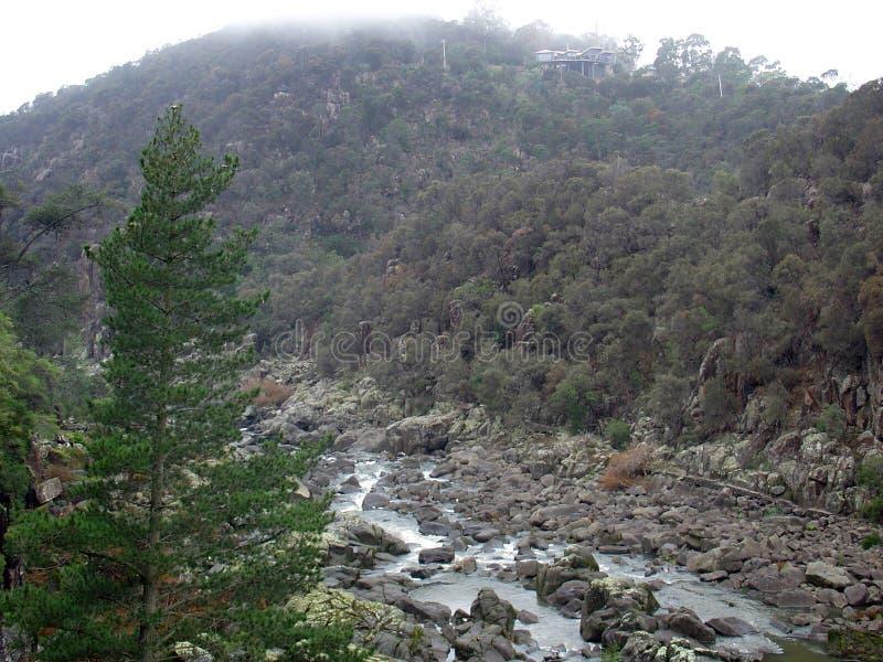 Cataract Gorge royalty free stock image