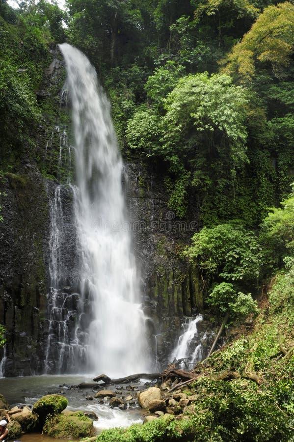 Catarata Zamora один из 2 впечатляющих водопадов в парке Лос Chorros в Коста-Рика стоковая фотография rf