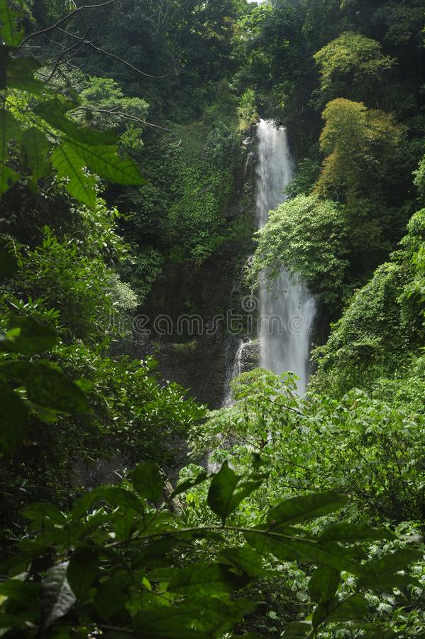 Catarata Zamora crashes down in Los Chorrs park in Costa Rica. Los Chorros Waterfalls are located between the small towns of Chilamate and Tacares, just stock photos