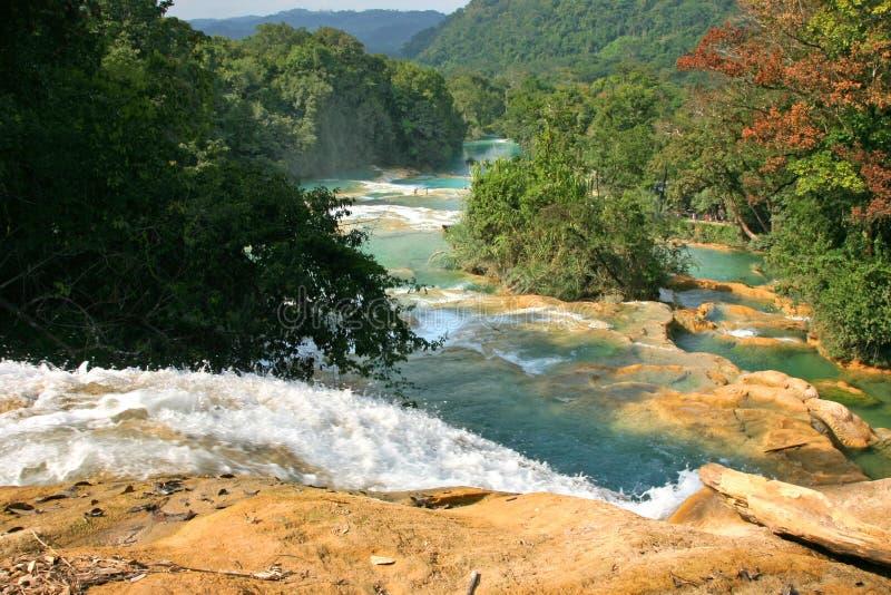 Cataratas de Agua Azul Mexico foto de archivo libre de regalías