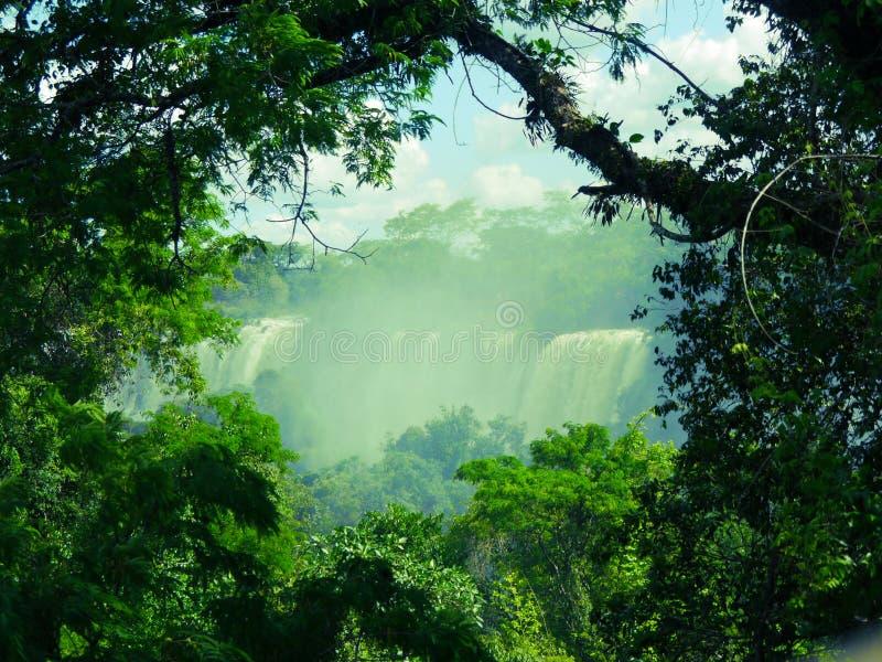 Cataratas Iguazu stock afbeeldingen