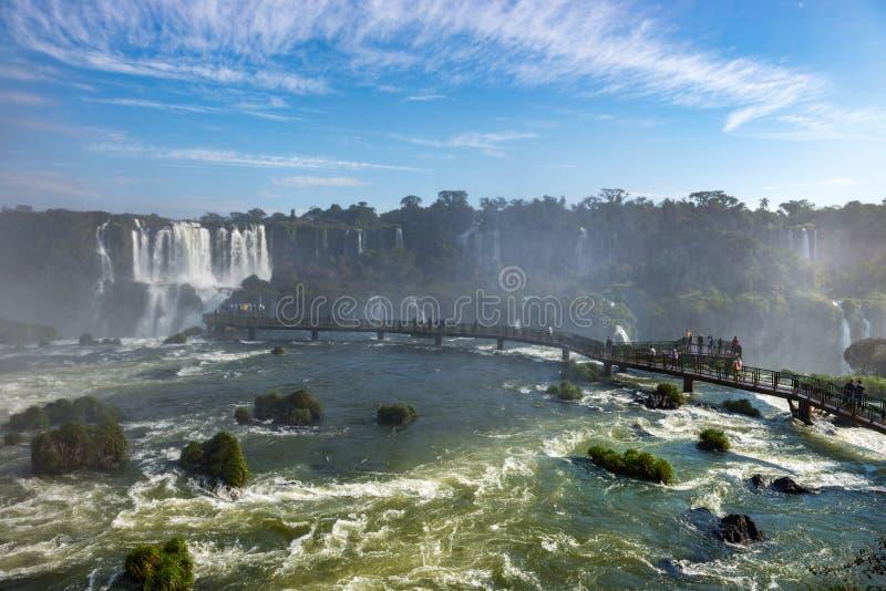 Cataratasen av Iguacu ( Iguazu) nedgångar som lokaliseras i Brasilien fotografering för bildbyråer
