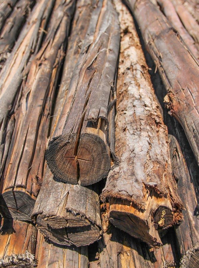Catasta di legna immagine stock libera da diritti