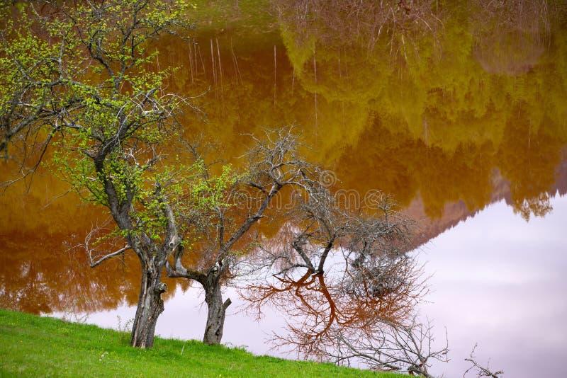 Catastrophe ?cologique : pollution de cyanure au lac Geamana pr?s de Rosia Montana, Roumanie images libres de droits