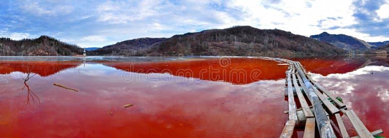 Catastrophe environnementale. Le panorama d'un lac complètement avec souillent image libre de droits