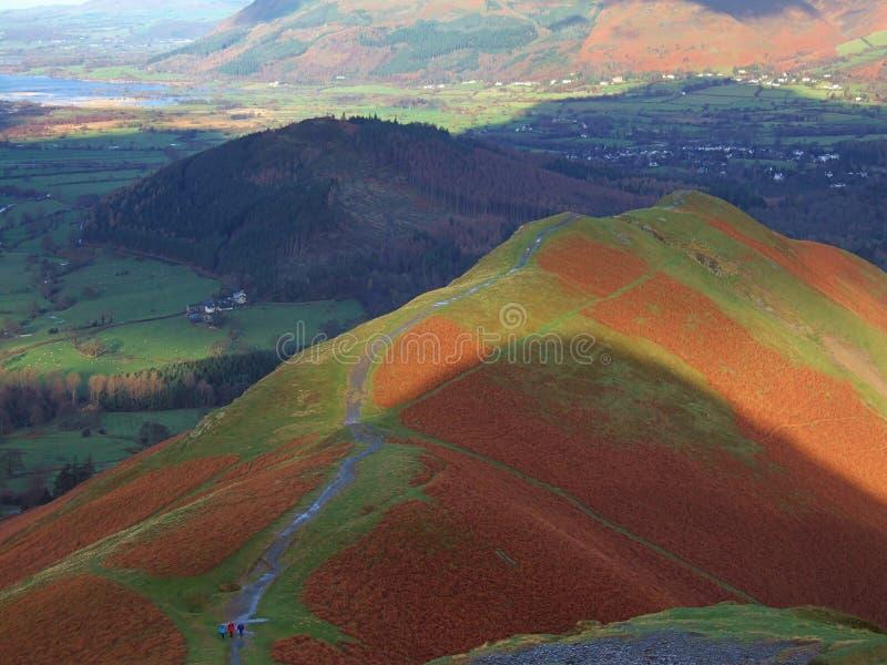 Download Catbells ridge stock image. Image of ridge, health, catbells - 1700553
