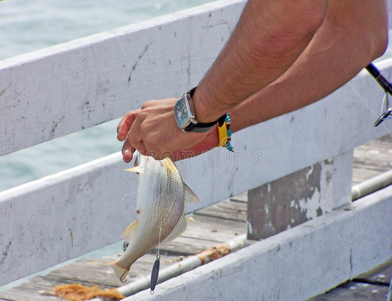 Download Catch!!! Royalty Free Stock Image - Image: 1109036