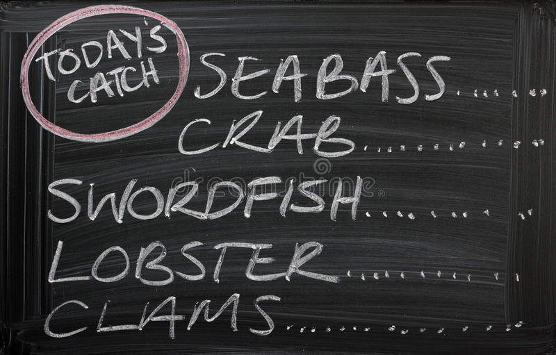 Catch of the Day. Blackboard sign for a seafood menu with the catch of the day, including sea bass, lobster,clams,crab and swordfish. Fresh fish is an essential royalty free stock photography
