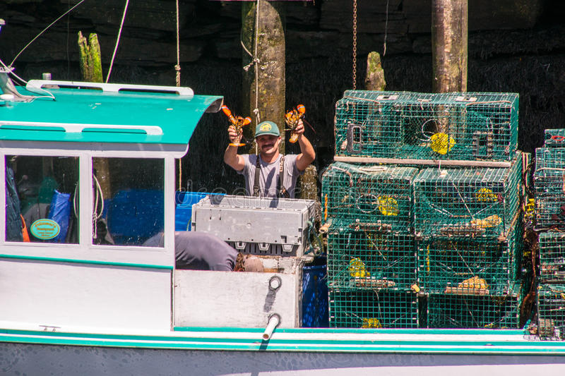 Catch of the Day royalty free stock photos