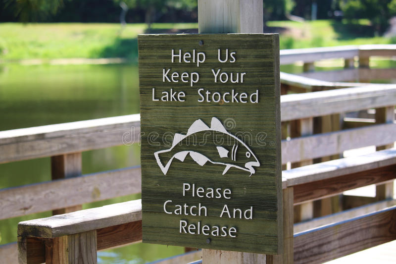 Catch and Release stock images