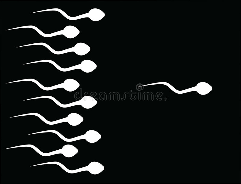 The catch sperm