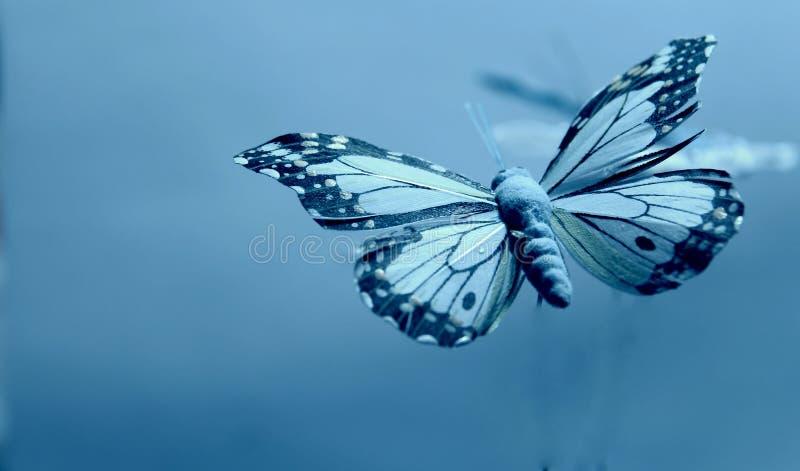 Download Catched in blu fotografia stock. Immagine di colore, decorazione - 55360022