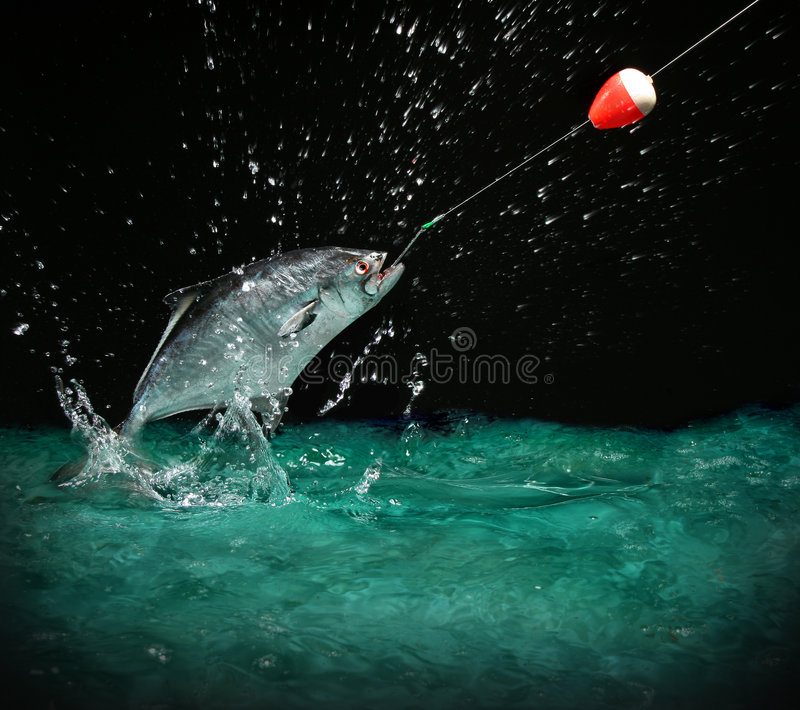 Catching a big fish at night. Catching a big fish with a fishing pole at night