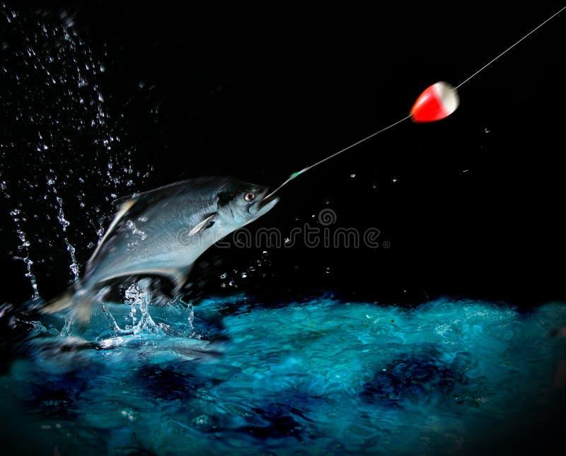 Catching a big fish at night royalty free stock image