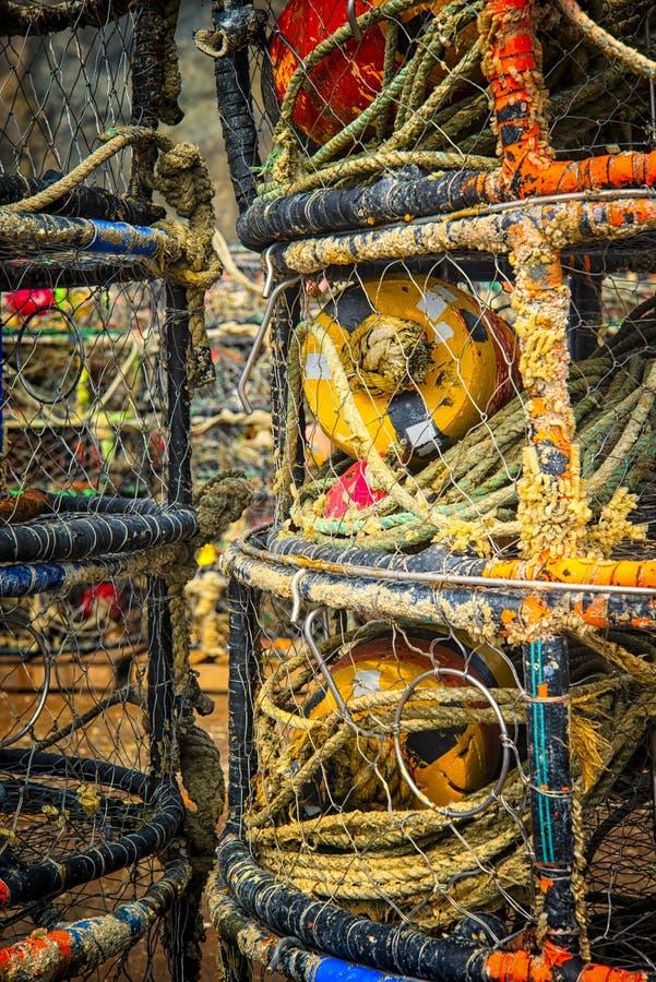 Catching Crabs, Oregon Coast royaltyfri foto