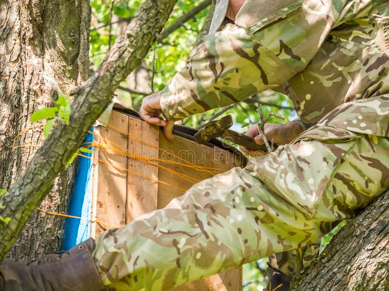 Catching a honey bees swarm. Wooden trap for wild bees or for swarming bees. stock images