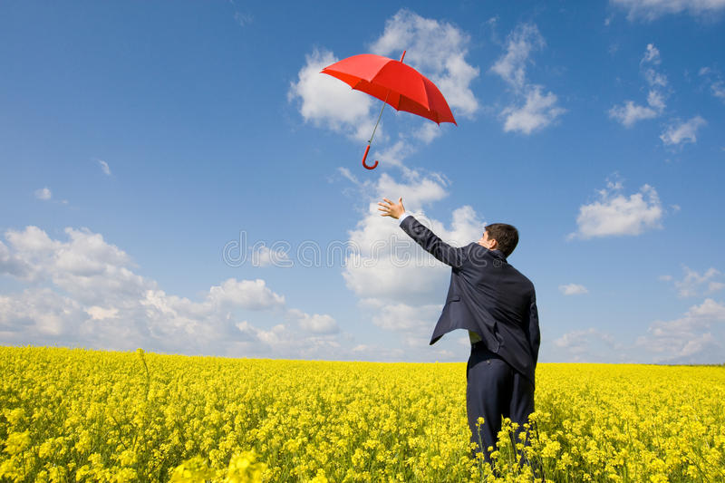 Catching umbrella. Image of young businessman stretching arm towards red umbrella in flower field royalty free stock photos