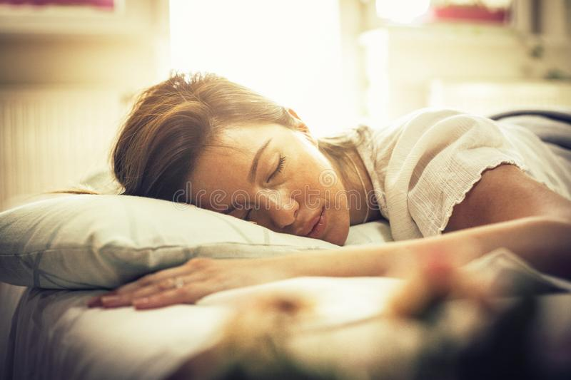 Catching up on her beauty sleep. stock images