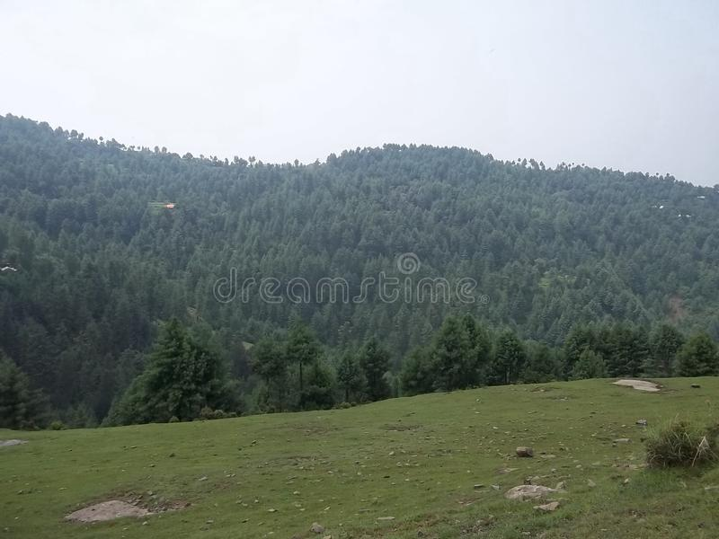 Catchy natural scene of Sudhnoti Kashmir royalty free stock photo