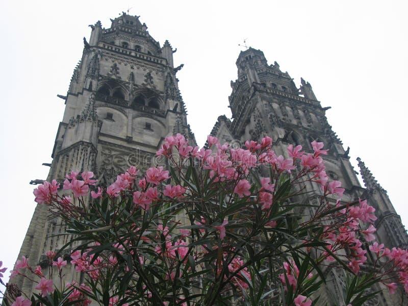 Catedral das excursões com flores fotografia de stock