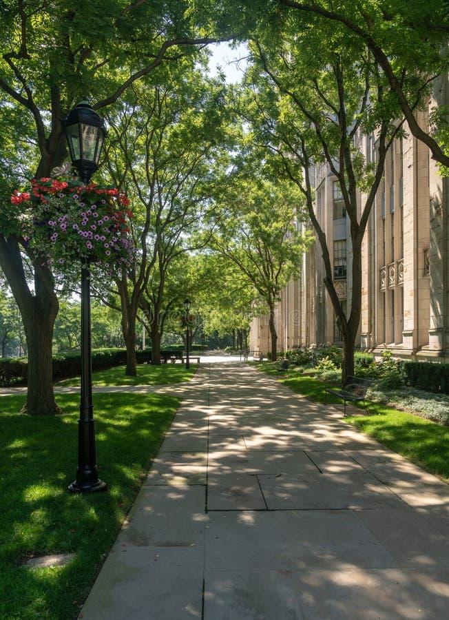 Catedral de aprender el edificio en la universidad de Pittsburgh foto de archivo