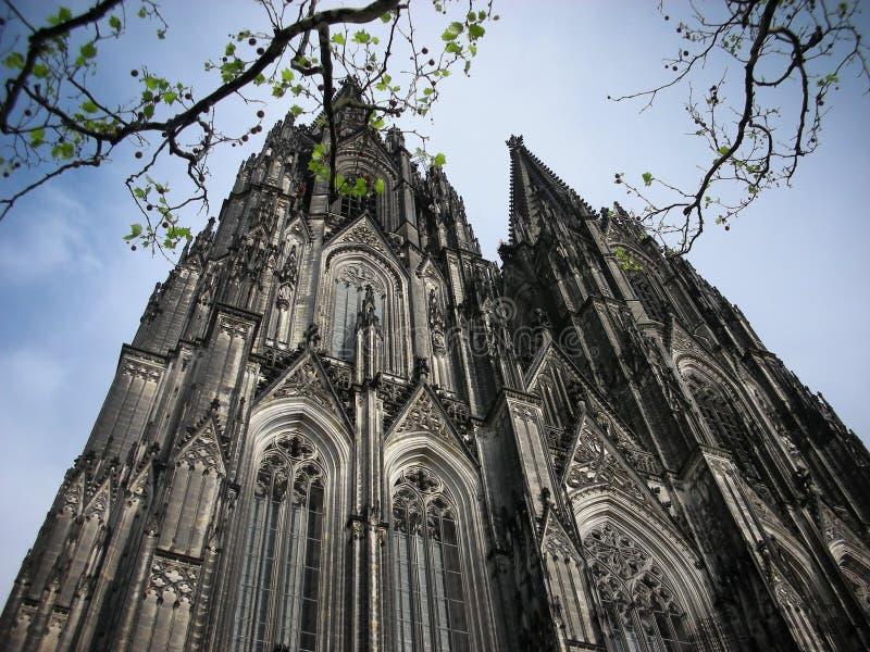 Catedral de Colónia fotos de stock
