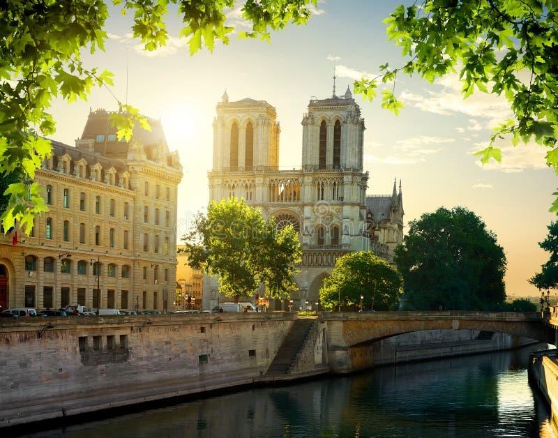 Catedral de Notre Dame imagem de stock