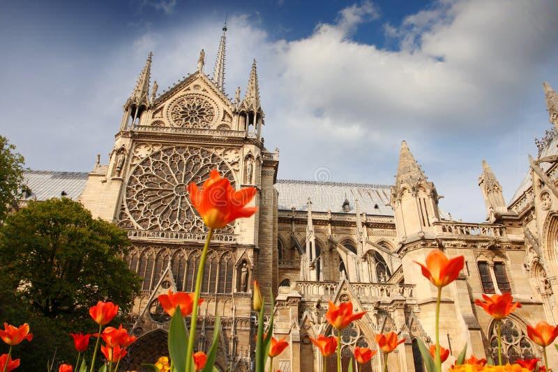 Catedral de Notre Dame em Paris, France foto de stock