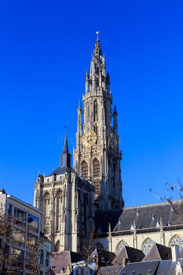 Catedral de nuestra se?ora en Amberes imágenes de archivo libres de regalías