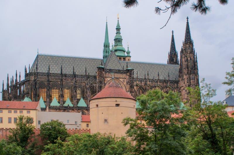 Catedral de Praga, República Checa de St Vito, vista bonita imagens de stock royalty free