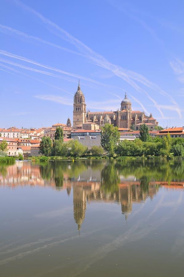 Catedral de Salamanca. imagem de stock