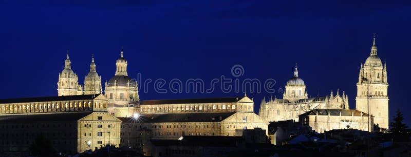 Catedral de Salamanca e torres de Clerecia imagens de stock royalty free