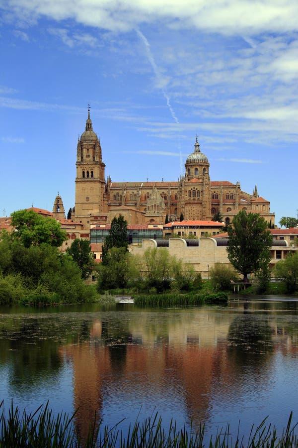 Catedral de Salamanca - vista do rio imagens de stock royalty free